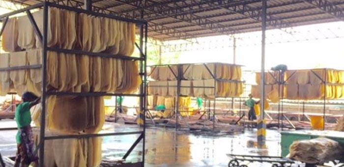 Rayong Factory Rx Thaihua